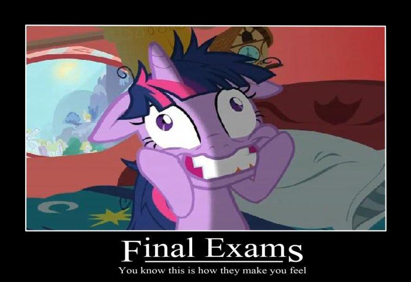 Twi finals
